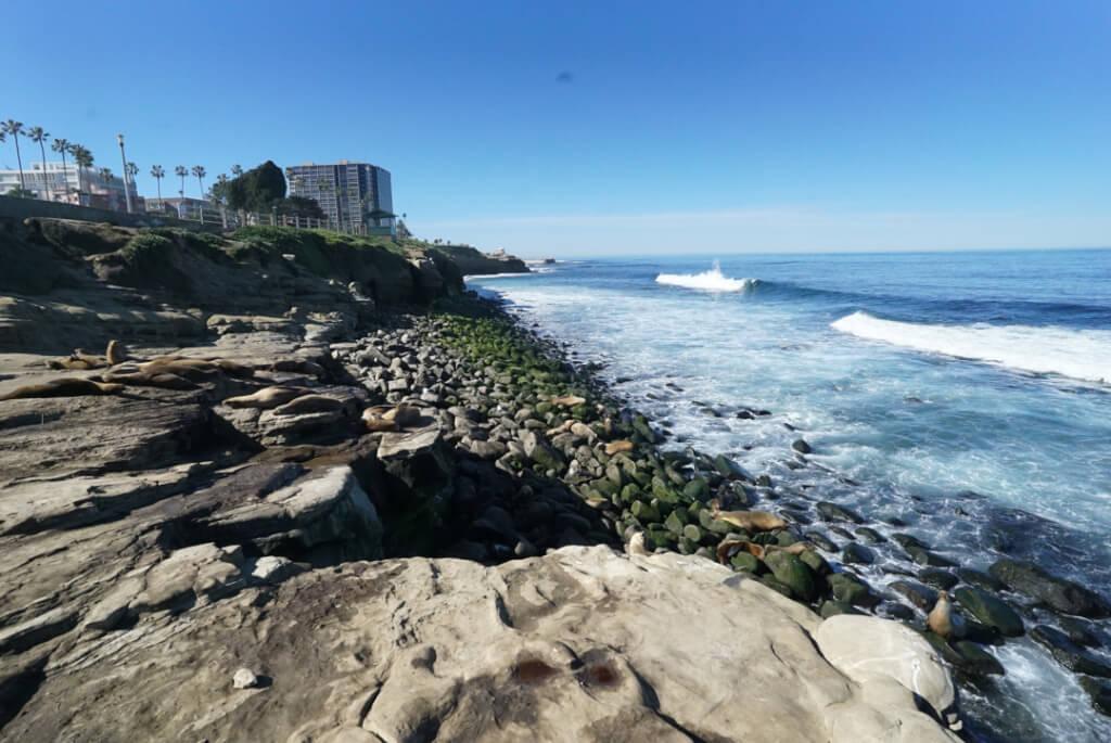 beach walk alcohol detoxification