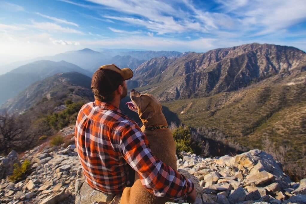 mans best friend dog friendly rehab hat man mountains rocks