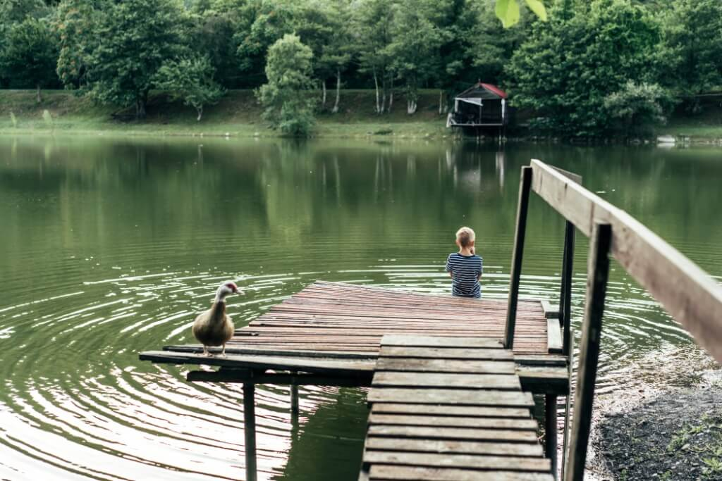 nature duck swimming trees digital detox to do unplug away technology